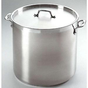 All Clad Pot